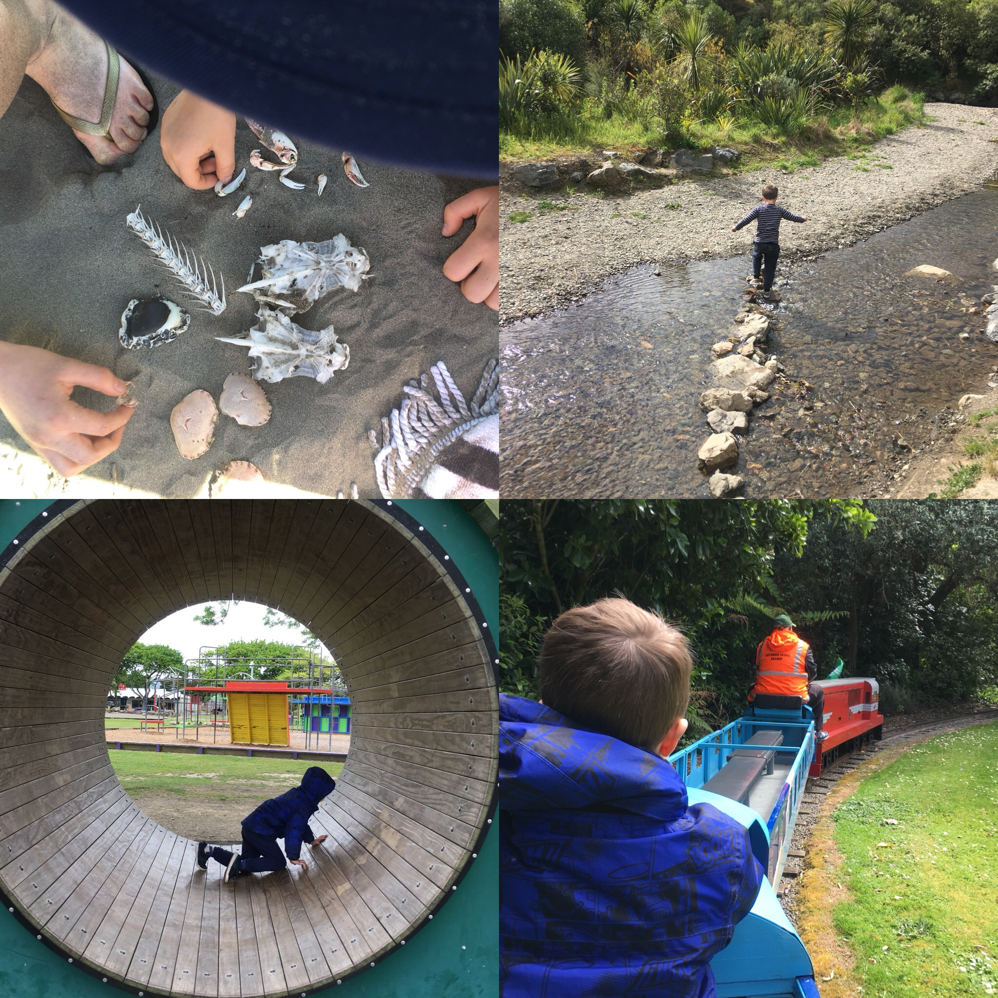 Lots of fun getting out and about in the October school holidays